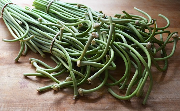 Garlic and Garlic Scape Recipes